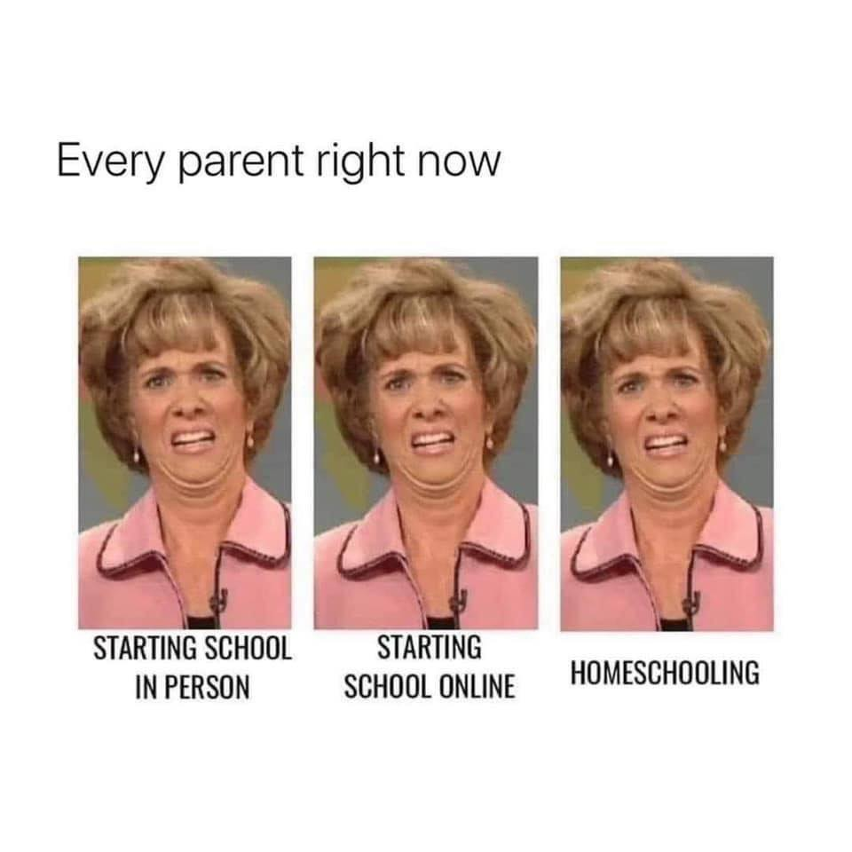 "Three disgusted faces showing ""Every parent right now: starting school in person; starting school online; homeschooling."""